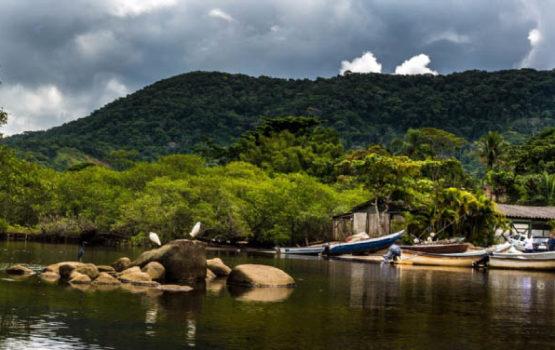 Apa - Área cedida pela Prefeitura de São Sebastião na Barra do Sahy - Notícias ICC