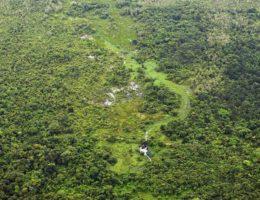 APA Baleia Sahy segue intacta segundo monitoramento aéreo