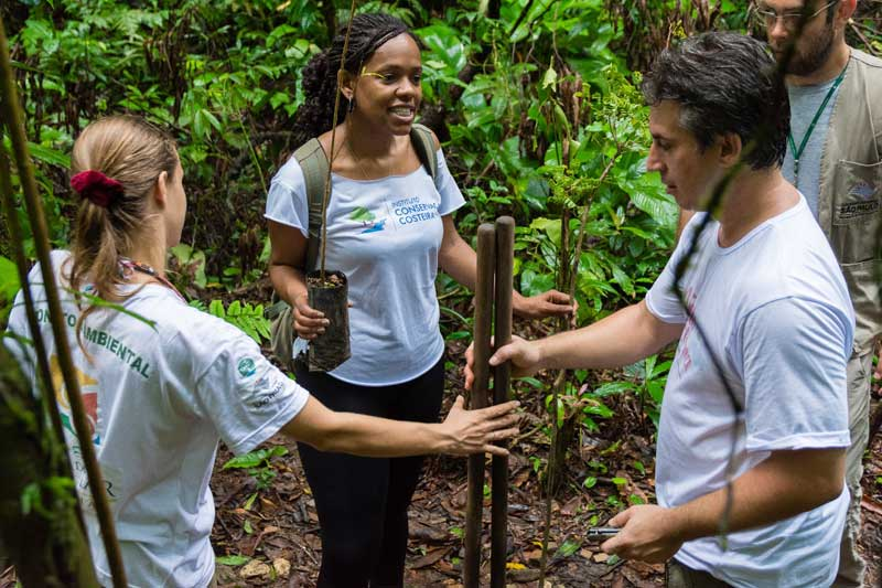 Trilha de Boiçucanga recebe mudas nativas da Mata Atlântica doadas pelo ICC